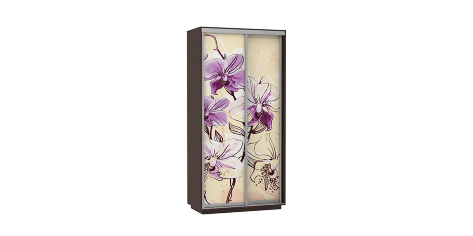 Шкаф-купе двухдверный Байкал 120 см (венге/орхидея)