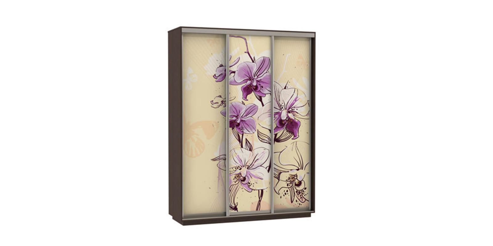 Шкаф-купе трехдверный Байкал 180 см (венге/орхидея)