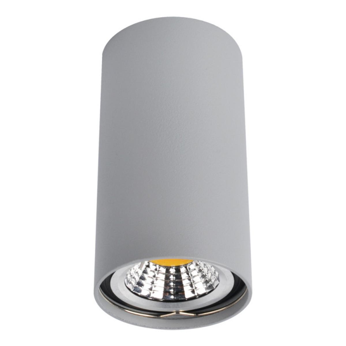 Купить Накладной светильник UNIX Накладной светильник ARTE Lamp A1516PL-1GY (14724), HomeMe